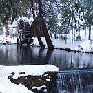 Little Bear Creek With a  Waterfall by NancyC