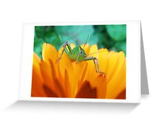 Green Hopper Greeting Card