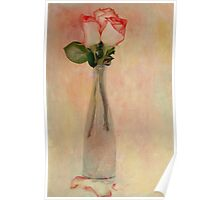 Roses for You Poster