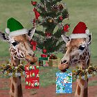 Christmas Giraffes by Jenny Brice