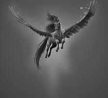 Black pegasus by Xenellia