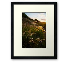 Warming Winds Framed Print