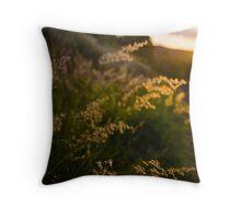Warming Winds Throw Pillow