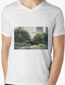 Summer Days(Central Park-New York City) Mens V-Neck T-Shirt