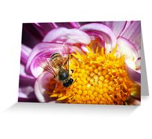 Bee Happy. Greeting Card