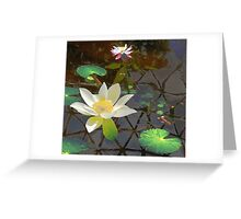 Lotus with reflections Greeting Card