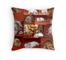 Candy is a Moomy :) Throw Pillow