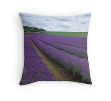 Walking in Fields of Lavender Throw Pillow