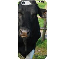 Cows - move out of my way iPhone Case/Skin