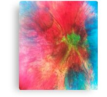 Pink and turquoise liquid light art by 710Visuals Canvas Print