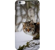 Bobcat iPhone Case/Skin