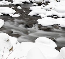 River during Winter  by Aneurysm