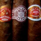 Cuban Cigars by Caroline Fournier