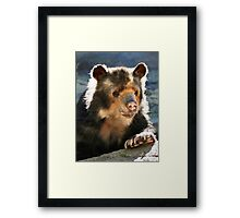 SPECKLED BEAR Framed Print