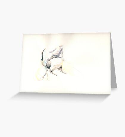 Picador Greeting Card