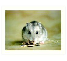 Cute Hamster Art Print