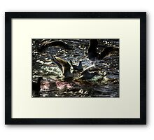 Bread Fight Framed Print