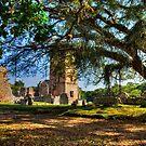 Old Panama by Bernai Velarde