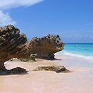 Horseshoe Bay - Bermuda by Jon Winston