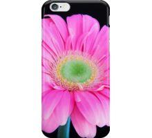 Soft Pink Gerbera Daisy iPhone Case/Skin