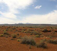 Arizona Landscape2 by EyesOfBeholder