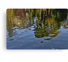 Water Reflexion Canvas Print
