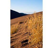 Dune 45 Photographic Print