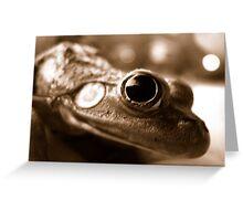 Close Frog Greeting Card