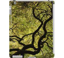 Japanese Maple Tree iPad Case/Skin