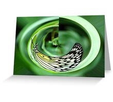 Circular Paper Kite Butterfly Greeting Card