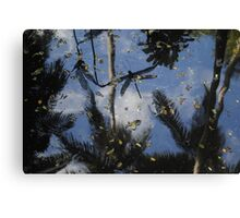 Flying over water Canvas Print
