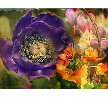 Floral Montage Series 7 Photographic Print