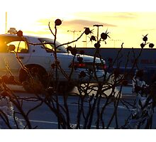 Rosehips and Taxi in Winter Photographic Print