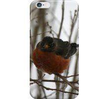 Want. Spring. NOW. iPhone Case/Skin