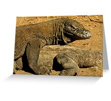 Komodo Dragons Greeting Card