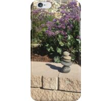 Balancing Act iPhone Case/Skin