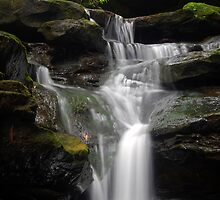 Westleigh waterfall by Jonathan Stables