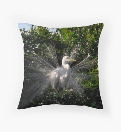 Mating Plumage Throw Pillow
