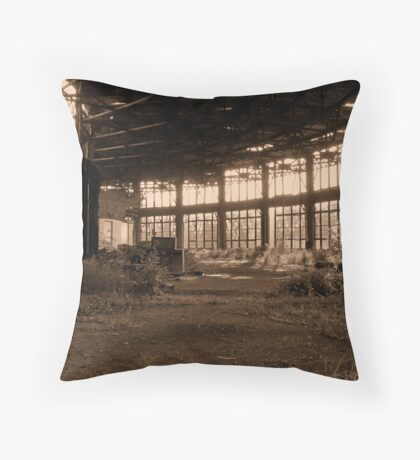 failed salvation of an old roundhouse Throw Pillow