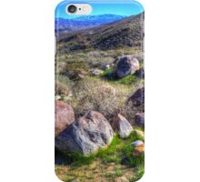 Indian Canyons 06: Andreas Canyon Rim Trail iPhone Case/Skin