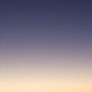 Evening star by David Burren