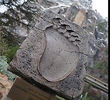 Disneyland Matterhorn by rachelgracey