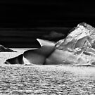 Nunatsiavut Iceberg by Steven David Johnson