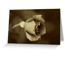a dying rose Greeting Card