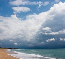 Storm Coming by Allan Walters