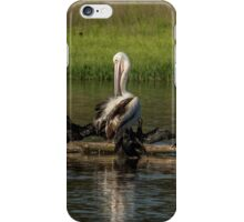 Odd one out Pelican iPhone Case/Skin