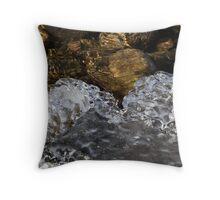 Icy Lakeshore Throw Pillow