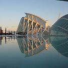 """Science """"Ciencias"""" Hall, Valencia, Spain by lizzyforrester"""