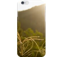 Afternoon Sunlight iPhone Case/Skin