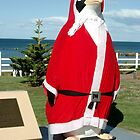 The Big Santa Penguin - Penguin Tasmania by Peterzphotoz